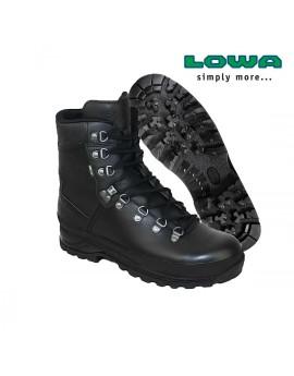 Chaussure LOWA Mountain BOOTS GTX
